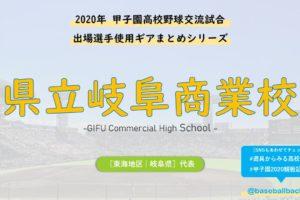 県立岐阜商業_野球部